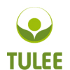 Tulee English