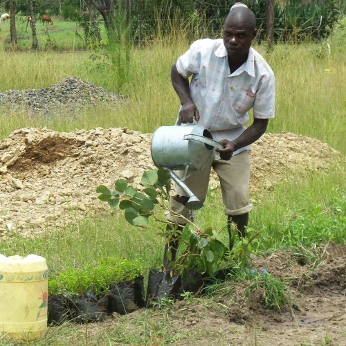 Ein Brunnen für Boya